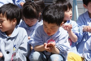 手のひらの中の小さな種…じーっくりと見つめる目(^^)