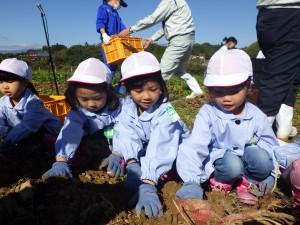 土に触って、掘ること。それだけで楽しいですね(^^)