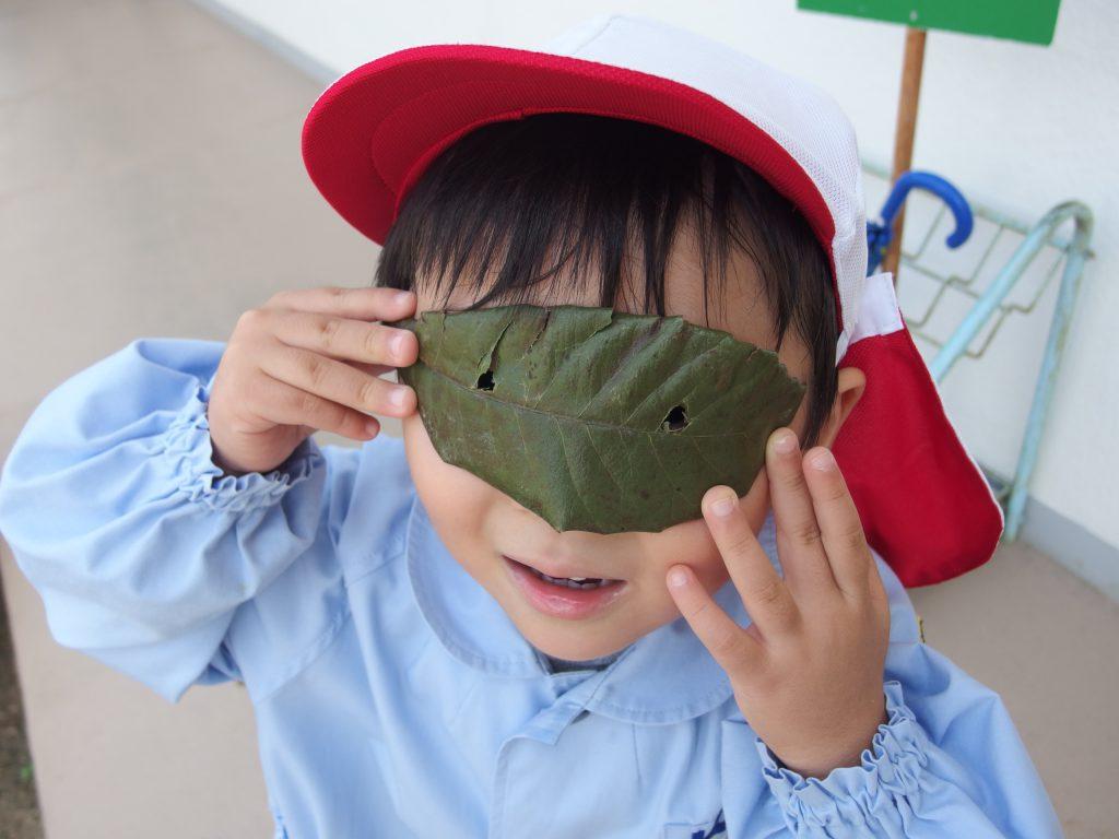 もみじ会とは関係ないんですが…葉っぱのメガネ!(^^)何が見えるかな?